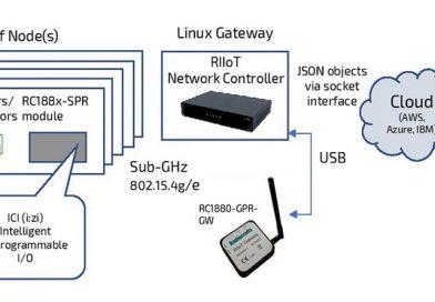 Radiocraft-ov RIIoT protokol